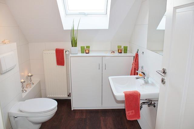 bathroom-1228427_640.jpg